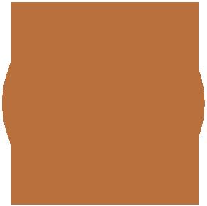 Proiectum Management Logo